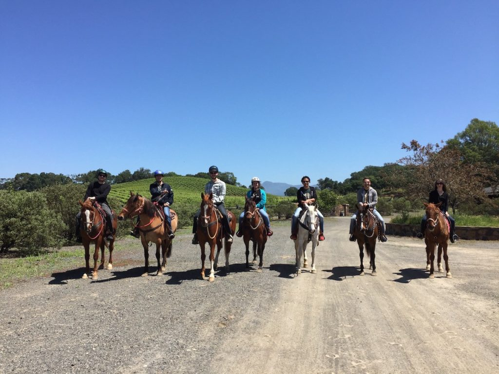 Balsamiq Team Retreat Horse Riding