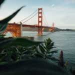 Fun team outing ideas in San Francisco and Bay Area
