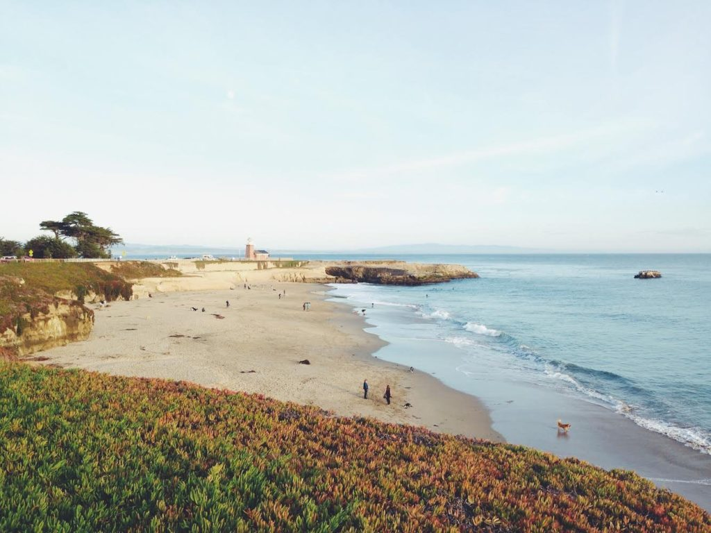 Santa Cruz - City Beach
